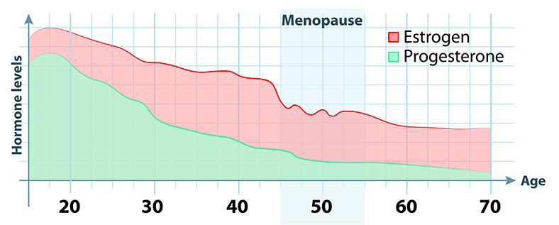 estrogen progesterone decline with age